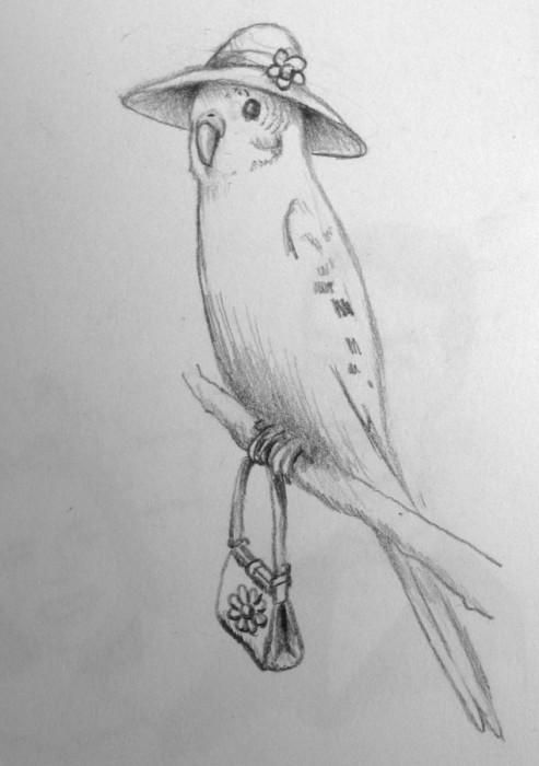 birdy tweety in hat