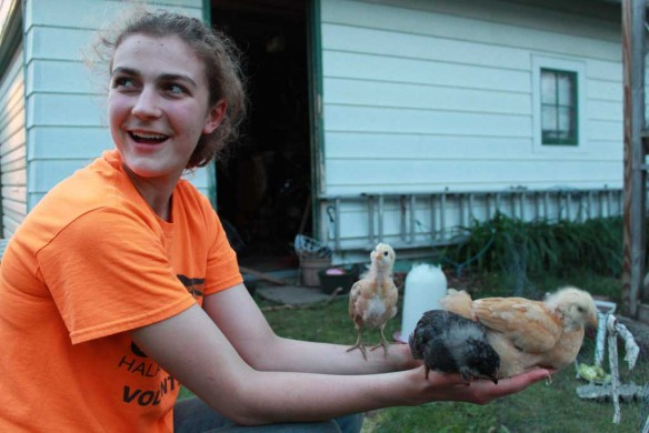 Helen with several teen-aged chicks in her hands